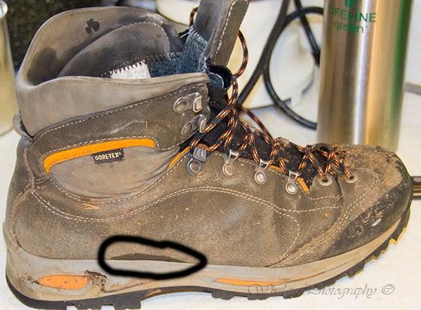 f674240f4cd Walks with Moss: Gear Review: La Sportiva Omega GTX Hiking Boot