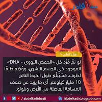 طول الحمض النووي  كاملا