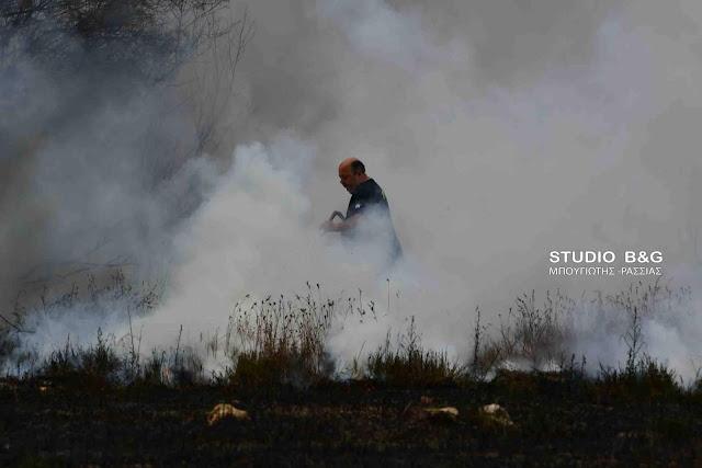 Πυρκαγιά στην παραλιακή οδό Ναυπλίου Νέας Κίου (βίντεο)