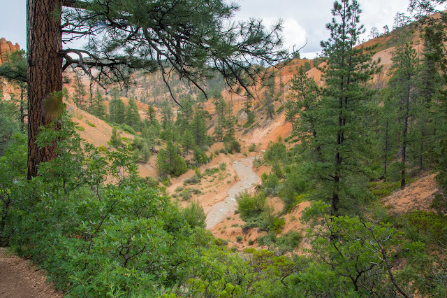 Mossy Cave Trail, Bryce Canyon National Park