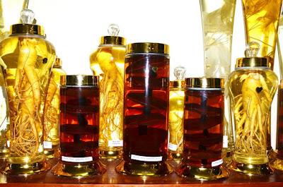 Bình rượu nấm linh chi và nhân sâm Hàn Quốc