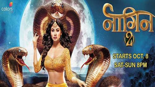 Poster Of Naagin S02E34 4th February 2017 200MB  576p Free Download Watch Online world4ufree.org