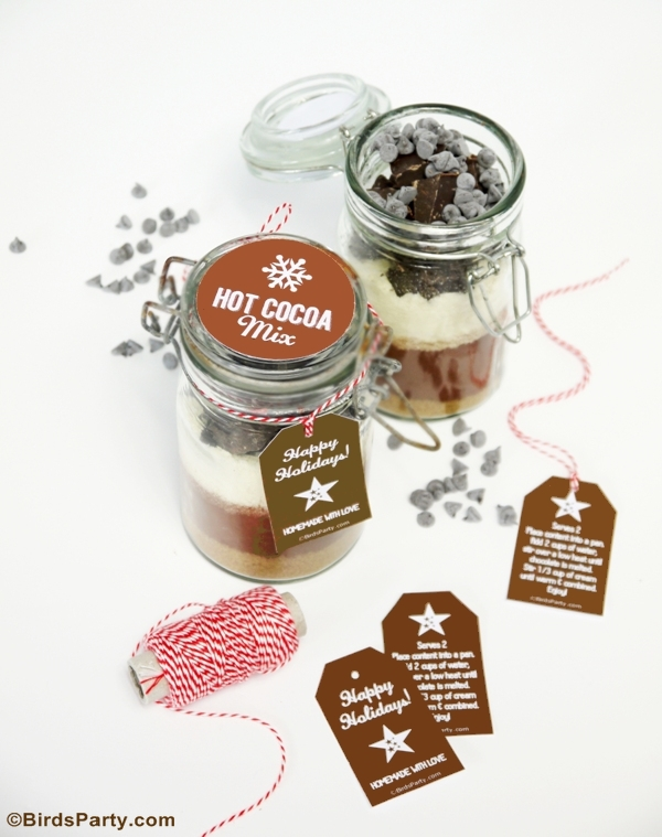 Hot Cocoa Mix Gift in a Jar with FREE Printable Gift Tags - BirdsParty.com