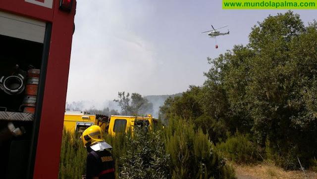 Los medios desplazados estabilizan el perímetro del conato de incendio de Puntagorda