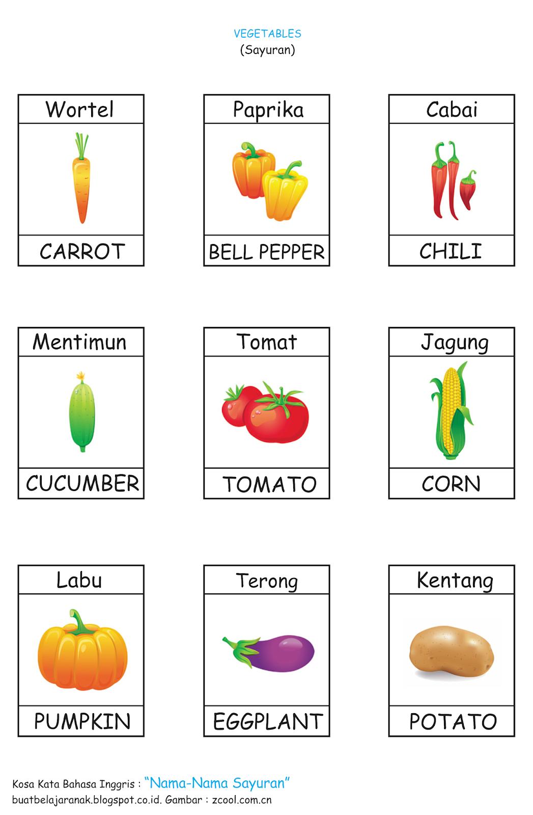 Nama Nama Sayuran Dalam Bahasa Inggris : sayuran, dalam, bahasa, inggris, Nama-Nama, Sayuran, Dalam, Bahasa, Inggris, Bimbel, Sekolah