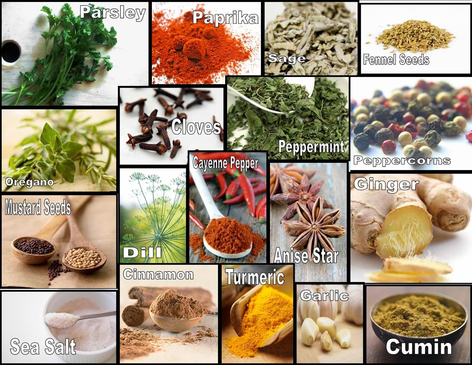 Culinary Physics List Of Common Herbs And Spices And