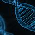 Curso de Diagnóstico Molecular de Doenças Infectocontagiosas