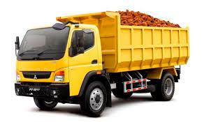 usia ideal untuk truk