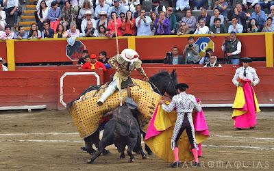 picador torero peru angelo caro toro español en la segunda corrida toros acho 2019