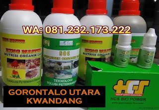 Jual SOC HCS, KINGMASTER, BIOPOWER Siap Kirim Gorontalo Utara Kwandang