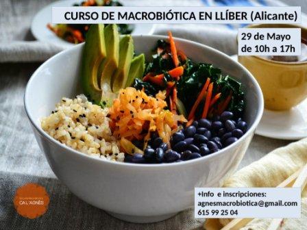 Nutrici n para la salud curso de macrobi tica en ll ber for Cursos de cocina en alicante