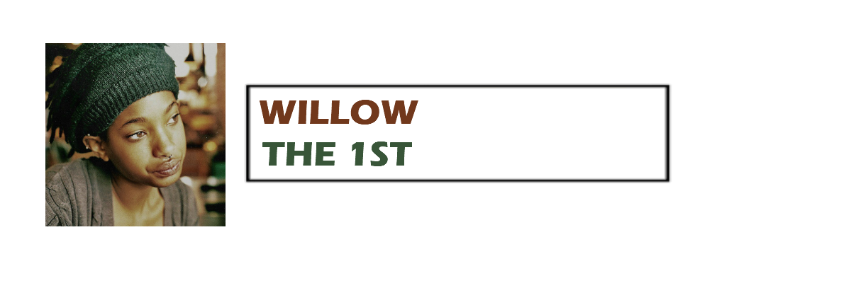 The 1st | Willow