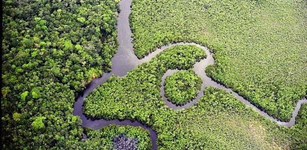 Bioma Amazônia e Biodiversidade