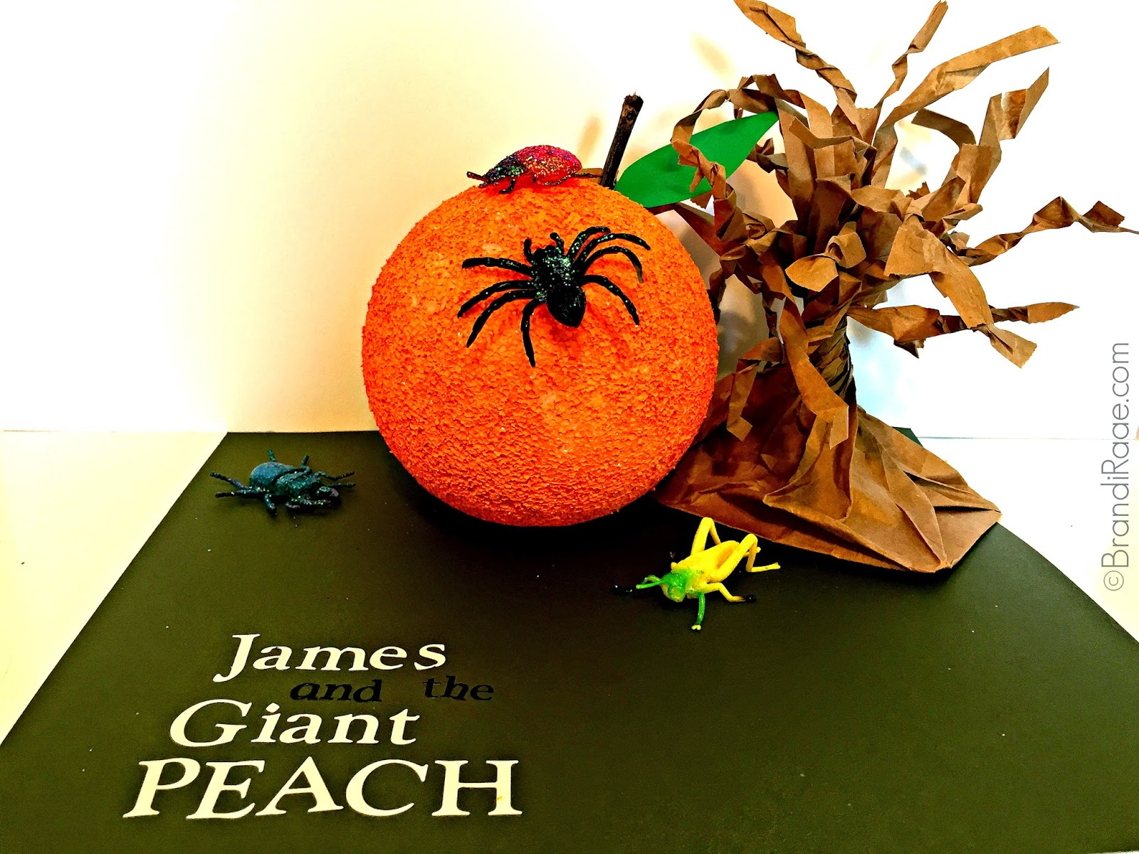 Brandi Raae James And The Giant Peach Activities And Resources