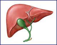 liver diseases and its remedy