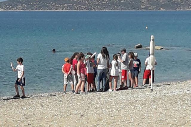 Μικροί μαθητές καθάρισαν την παραλία Δρεπάνου