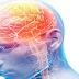 Atuação do Enfermeiro diante do AVC (Acidente Vascular Cerebral)