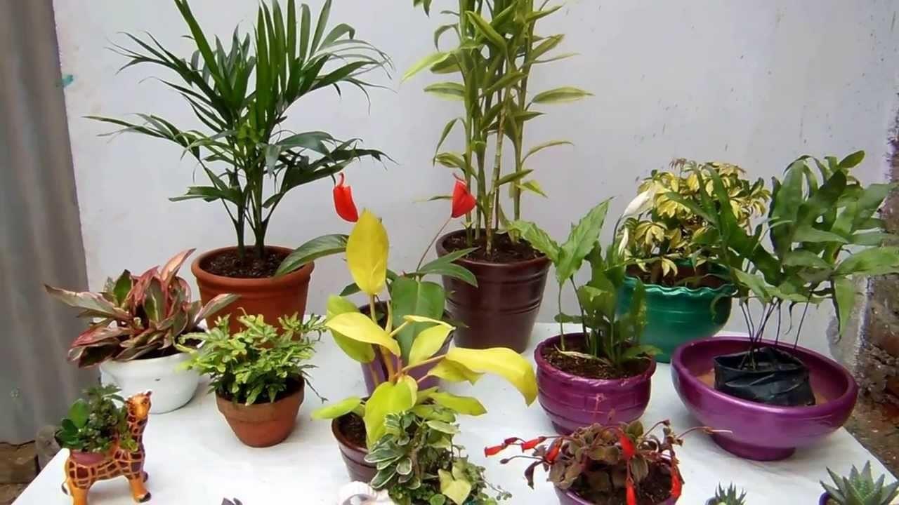 Hogar 10 macetas decorativas de interiores una gu a completa for Macetas para interiores hogar