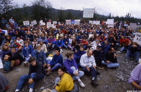 Vancouver Island Big Trees: Clayoquot Sound 20 Years Down The