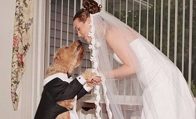 Mereka Adalah Manusia Yang Menikah Dengan Binatang