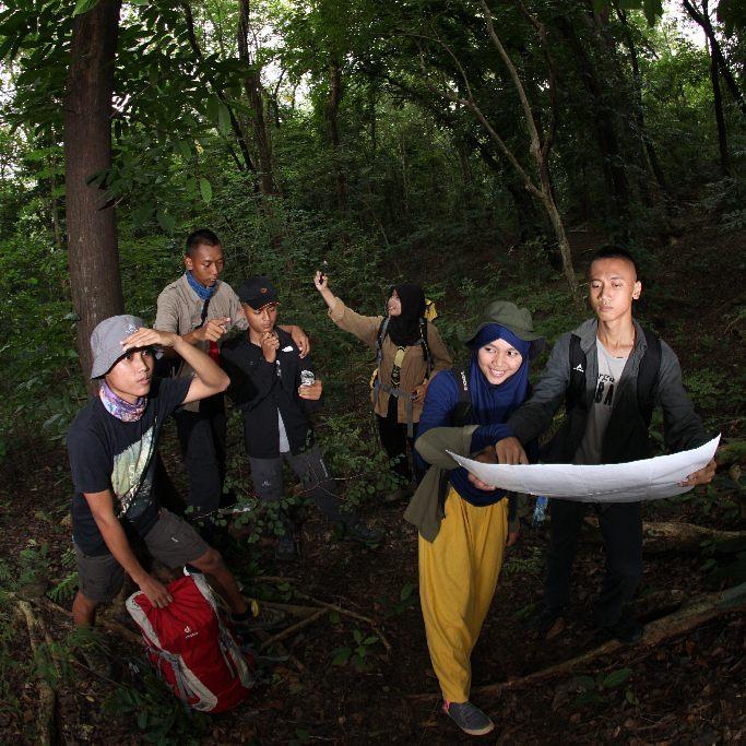 Tersesat di Hutan