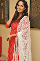 Anusuya in Red at Kalamandir Foundation 7th anniversary Celebrations ~  Actress Galleries 051.JPG
