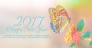 sweet happy new  year 2017 quotes messages pictures