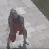 """Flora Matos divulga clipe de """"Perdendo O Juízo""""; assista"""