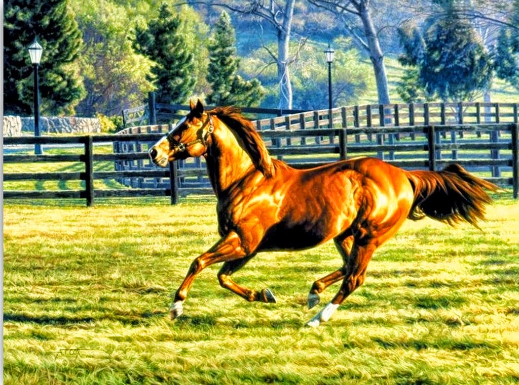 pinturas-oleo-paisajes-caballos