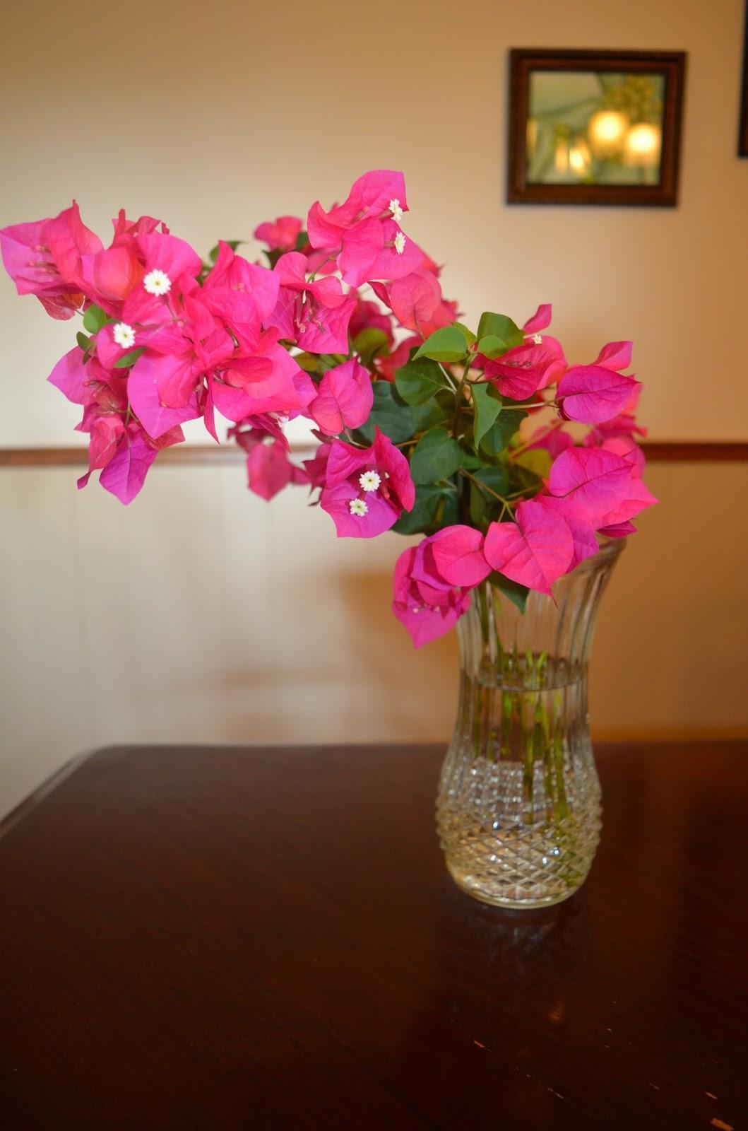 Rebecca's Texas Garden: In a Vase: Bits of Bougainvillea