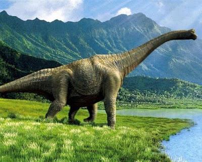 Especie dinosaurio apatosaurio