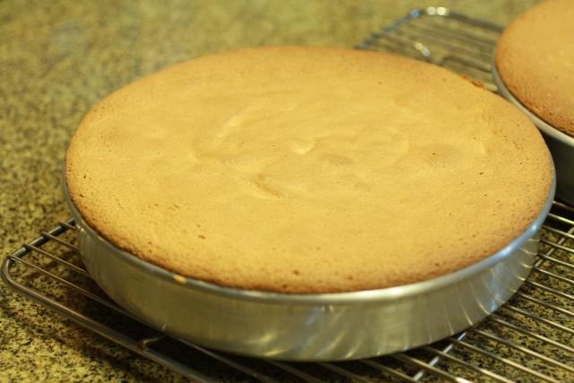 torta esponja cocinada en un molde redondo