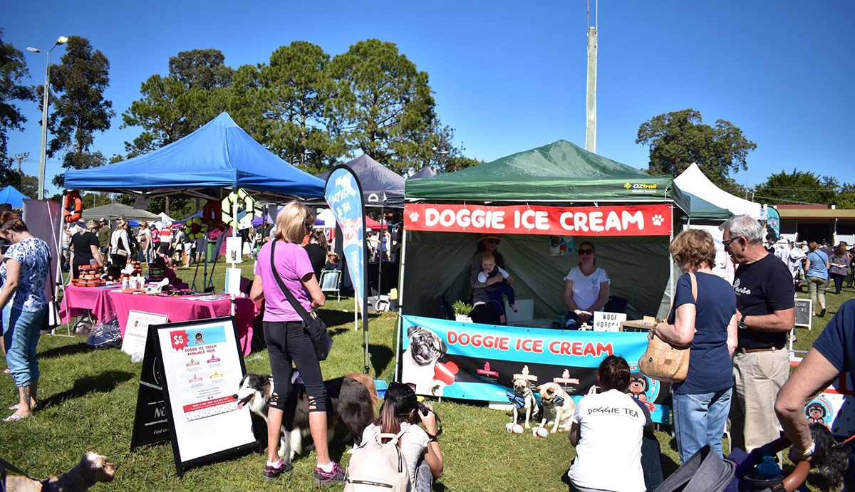 Dogs checking Doggie Ice Cream pet stall at Santa Paws in the Park