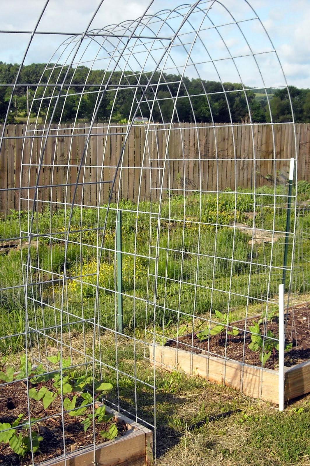 The Best Trellis Designs Organic Gardening My Favorite