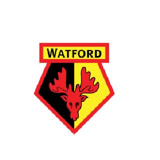 Skuad Watford