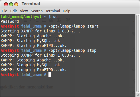 XAMPP Linux Start & Stop