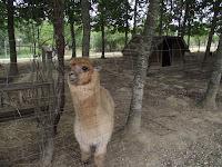 parc animalier rieumes