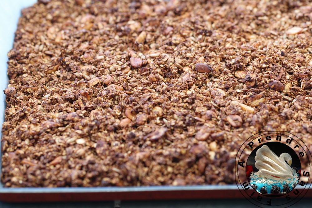 Muesli au chocolat et cacahuètes