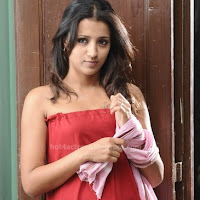 Trisha latest hot pictures