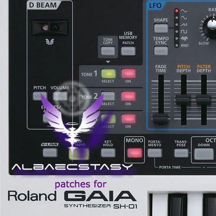 Roland Gaia Patches Download Lasopagraphics