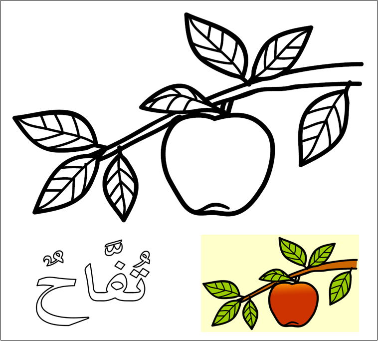 mewarnai buah buahan tpq nur azizah