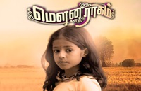 Mouna Raagam 23-06-2017 Vijay TV Serial Episode 45