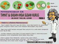 Diet Atkins Fasa 4