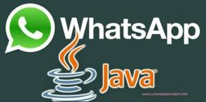 Download whatsapp apk for nokia asha 201