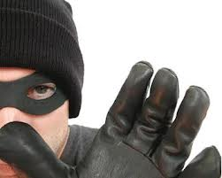 THINGS YOUR BURGLAR WON'T TELL YOU