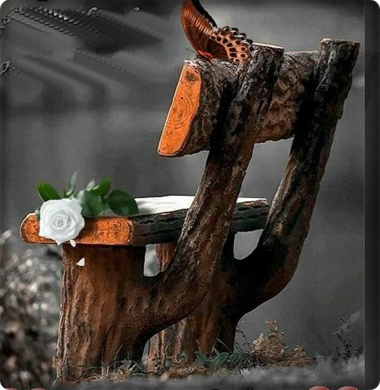 Linda cadeira lapidada em um tronco de árvore, uma rosa a espera de alguém e uma borboleta solitária aprecia tudo.