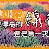 【順化傳統手藝】越南線香七彩部落 肉桂味線香的製作故事