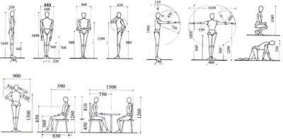 Portafolio digital dise o arquitect nico 1 for Antropometria medidas