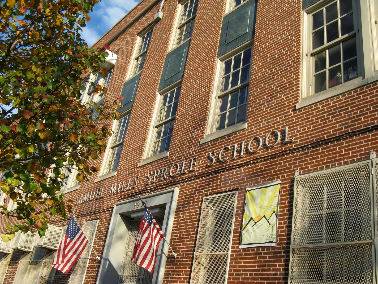 Pardon Me For Asking: Help Carroll Gardens School For Innovation\'s ...