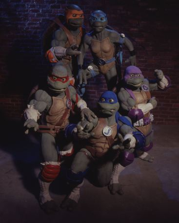 The Fifth Turtle